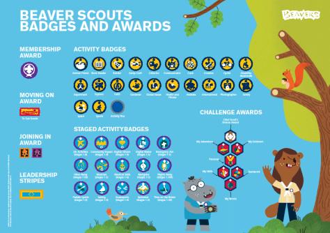 Beavers Badges